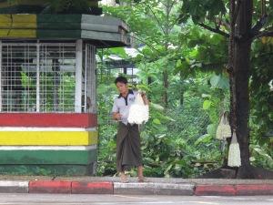 jasmine street seller