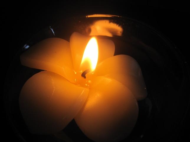 frangipani candle