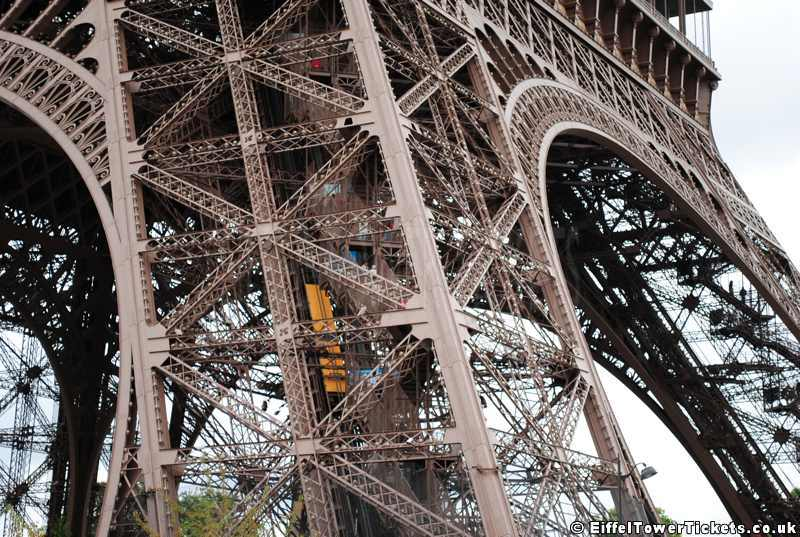 Eiffel Tower Stairs : Fear feisty blue gecko a tail of the unexpected