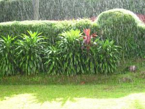 yangon monsoon