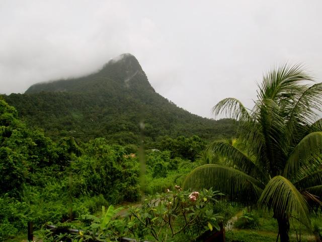 Rains in the rainforest