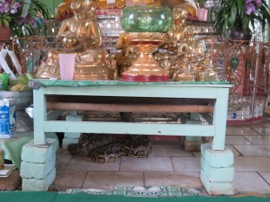 snake temple 4
