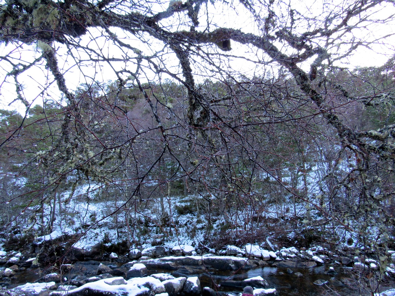 Inverness 1
